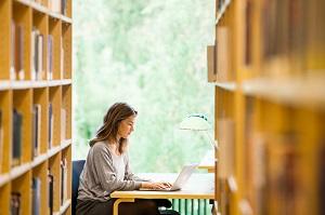 universitetet i stavanger studietilbud